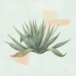 Desert Color Succulent I Mint by Sue Schlabach