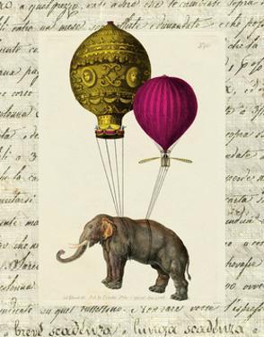 Elephant Ride II v.2 by Sue Schlabach