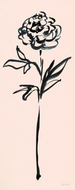 Floral Line II on Pink by Sue Schlabach
