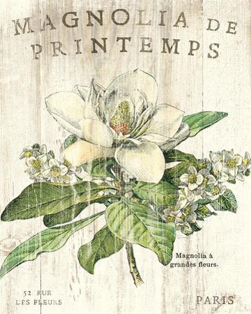 Magnolia de Printemps by Sue Schlabach