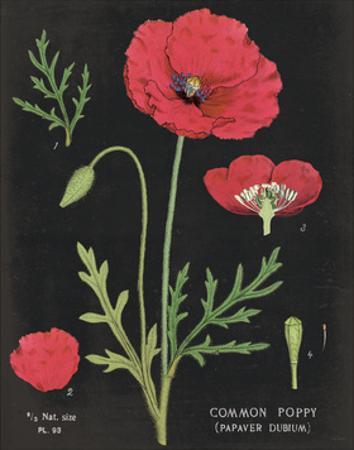 Poppy Chart by Sue Schlabach