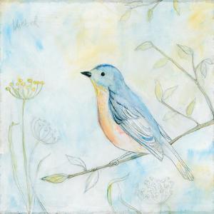 Sketched Songbird II by Sue Schlabach