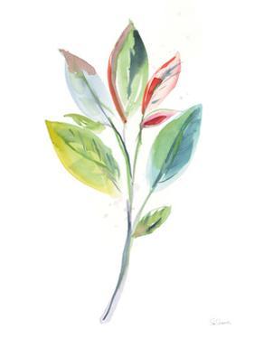 Washy Leaves I by Sue Schlabach