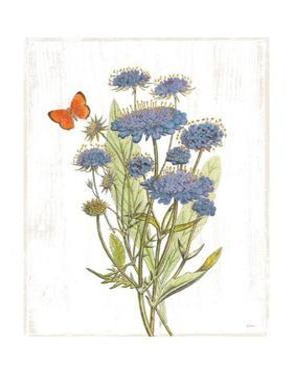White Barn Flowers IX by Sue Schlabach