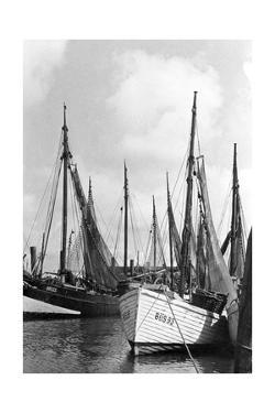 Fishing Boats in Koenigsberg by Süddeutsche Zeitung Photo