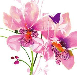 Orchid Blush by Summer Thornton