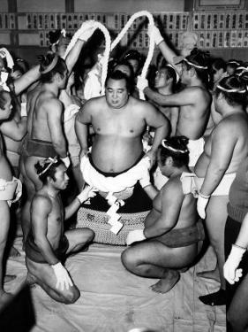 Sumo Wrestlers in Japan. Ca 1950s