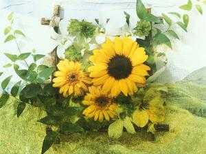 Sun Flowers And Green Vine Bouquet with Green Mountain Tops