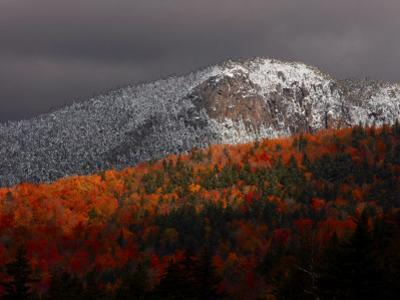Sun Hits Fall Foliage Colors in the White Mountain National Forest in Twin Mountain, New Hampshire