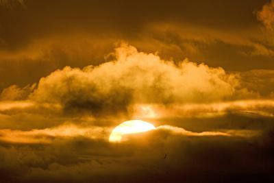 https://imgc.allpostersimages.com/img/posters/sun-rising-through-the-clouds-at-dawn-anwr-alaska-usa_u-L-PN6ZXI0.jpg?p=0