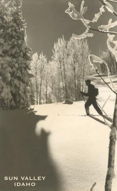 Sun Valley, Idaho, Cross Country Skier