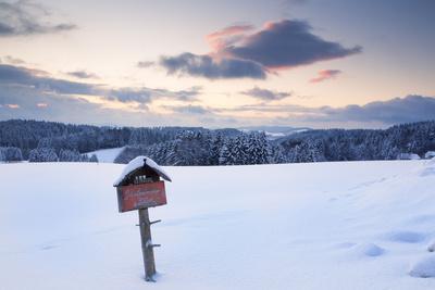 https://imgc.allpostersimages.com/img/posters/sundown-close-furtwangen-in-winter-black-forest-baden-wurttemberg-germany_u-L-Q1EY5JE0.jpg?artPerspective=n