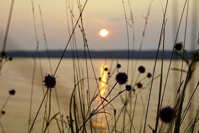 https://imgc.allpostersimages.com/img/posters/sundown-lelang-lake-dalsland-sweden_u-L-Q1EXUY50.jpg?artPerspective=n