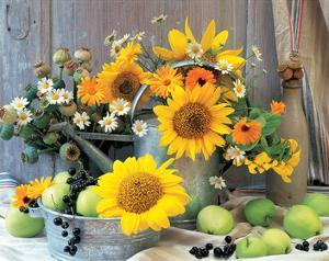 Sunflower Arrangement I
