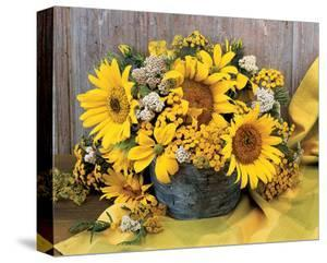 Sunflower Arrangement II