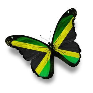Jamaican Flag Butterfly, Isolated On White by suns_luck