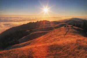 Sunscape Above the Fog at Mount Tamalpais