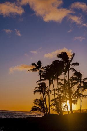 https://imgc.allpostersimages.com/img/posters/sunset-at-poipu-beach-kauai-hawaii-usa_u-L-PXR86C0.jpg?p=0