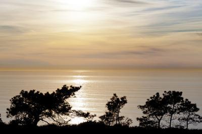 https://imgc.allpostersimages.com/img/posters/sunset-on-ocean-la-jolla-california-usa_u-L-PN6NEN0.jpg?artPerspective=n