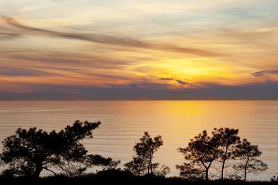 https://imgc.allpostersimages.com/img/posters/sunset-on-ocean-la-jolla-california-usa_u-L-PN6P3R0.jpg?p=0