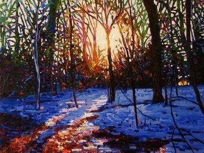https://imgc.allpostersimages.com/img/posters/sunset-on-snow-2010_u-L-Q1I9IP10.jpg?artPerspective=n