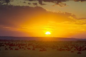 Sunset over Serengeti National Park