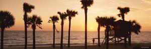 Sunset over the Ocean, Gulf of Mexico, Lido Beach, St. Armands, Florida Keys, USA