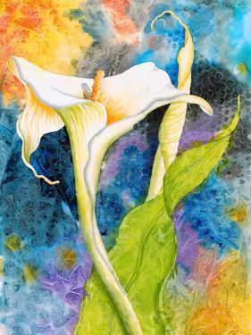 Calla Cosmos by Sunshine Taylor