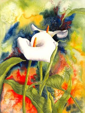 Calla Dream by Sunshine Taylor