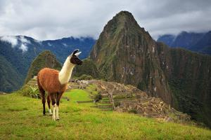 Machu Picchu, Peru, UNESCO World Heritage Site. One of the New S by sunsinger