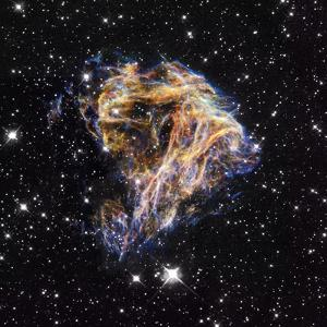 Supernova Remnant LMC N 49