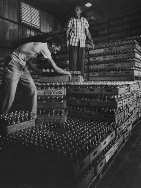 Supply of Coca Cola at Guantanamo Naval Base