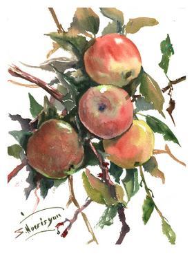 Apples 2 by Suren Nersisyan