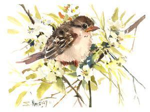 Baby Sparrow by Suren Nersisyan