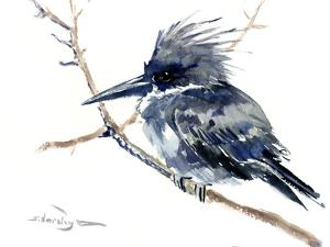 Belted Kingfisher 4 by Suren Nersisyan