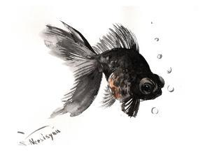 Black Moor, Goldfish by Suren Nersisyan