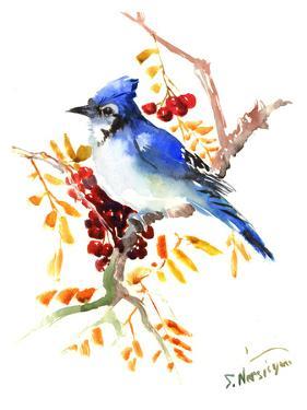 Blue Jay 12 by Suren Nersisyan