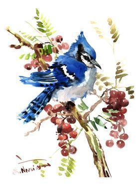 Blue Jay 8 by Suren Nersisyan