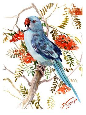Blue Parakeet by Suren Nersisyan