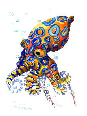 Blue Spoted Octopus