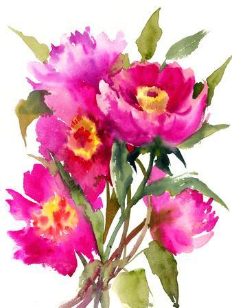 Bright Pink Peony Flowers