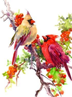 Cardinal Birds Suren by Suren Nersisyan
