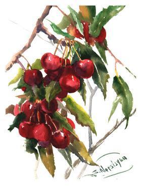 Cherries by Suren Nersisyan