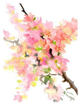 Cherry Blossom Sakura by Suren Nersisyan