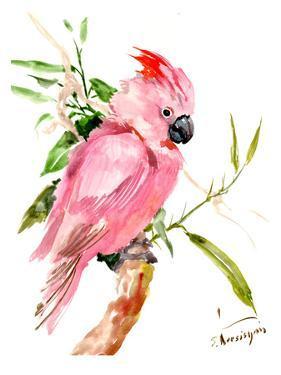 Cockatoo by Suren Nersisyan