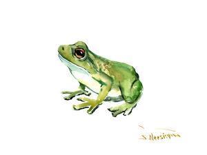 Common Frog by Suren Nersisyan