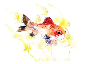 Fish Aquarium Nursery by Suren Nersisyan