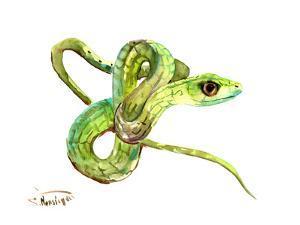 Florida Rough Green Snake by Suren Nersisyan