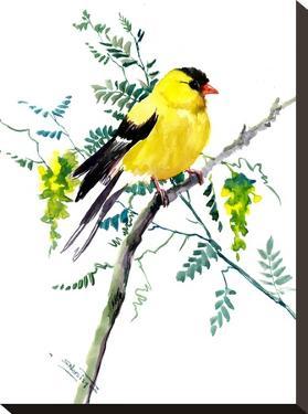 Goldfinch by Suren Nersisyan