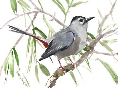 Gray Green Bird Art Catbird by Suren Nersisyan